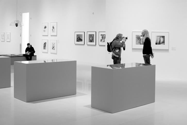 pojke och fotograf och curator